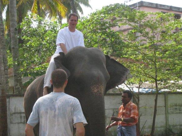 2010 India Ashram Elephant