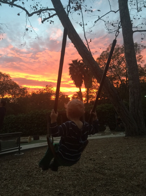 20150129 Swinging sunset